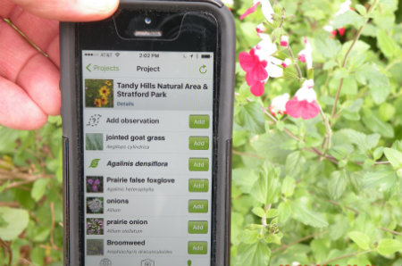 Bruce Benz's iPhone with iNaturalist and flower